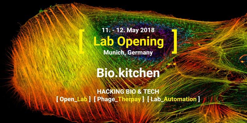 bio.kitchen-unternehmertum